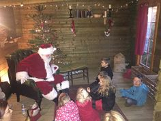 All the Magic of Christmas at Weymouth SeaLife Centre