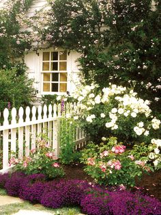 Truly charming cottage garden
