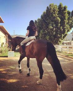 The most important role of equestrian clothing is for security Although horses can be trained they can be unforeseeable when provoked. Riders are susceptible while riding and handling horses, espec… Cute Horses, Horse Love, Beautiful Horses, Horse Photos, Horse Pictures, Equestrian Outfits, Equestrian Style, Dressage Horses, Draft Horses
