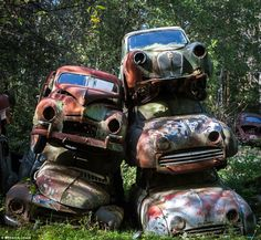 The scrapyard was established by two brothers to store cars abandoned by servicemen in during the Second World War now lies neglected