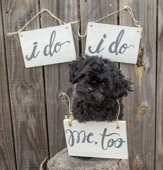 Dog Wood Sign Engagement Photo Prop Set of 3 by PinkBowParties