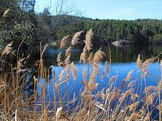 Wolfsgrubener See auf dem Ritten