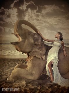 Elephant Girl by Kenvin Pinardy - AmO Images - AmO Images