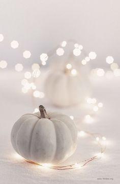 Hol Dir den Herbst ins Haus mit diesen 21 großartigen DIY-Ideen mit weißen Kürbissen! - Seite 14 von 21 - DIY Bastelideen
