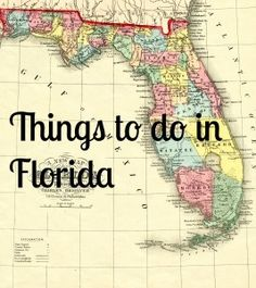 Things to do in Florida #florida #travel #vacation