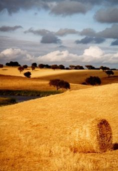 The countryside - Alentejo, Portugal Places In Portugal, Visit Portugal, Spain And Portugal, Portugal Travel, Beautiful World, Beautiful Places, Landscape Photography, Nature Photography, Monsaraz