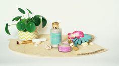leahlani hawai organic skincare Organic Skin Care, Cactus, Baby Shoes, Skincare, Natural Skin Care, Skin Care, Skin Treatments, Crib Shoes