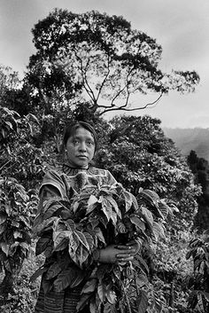 In collaboration with illy, renowned social photographer Sebastião Salgado tells a story of sustainable development in coffee growing cultures. Minimalist Photography, Urban Photography, Color Photography, Coffee Photography, Tikal, Magnum Photos, History Of Photography, Documentary Photographers, Funny Tattoos