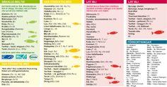 WWFs fiskguide