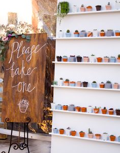 Boho Themed Party |