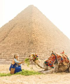 @wanderingwheatleys is Not Lost  near Cairo Egypt #sheisnotlost http://ift.tt/2zq15vw