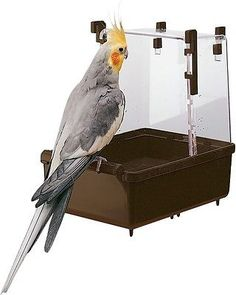 Large Parakeet Cockatiel Bath House Ferplast Cage Healthy Happy Love Animal Pet