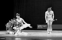 Photo d'actualité : Ballerina Margot Fonteyn on stage with Rudolf...
