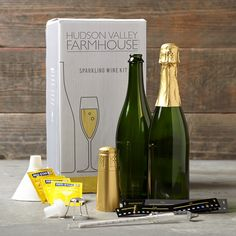 Sparkling Wine Making Kit  http://rstyle.me/n/dyj4wpdpe