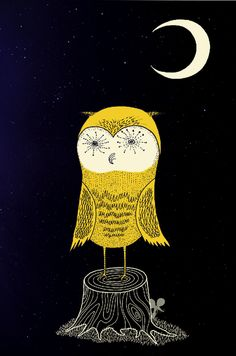 Owl from Hokus