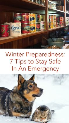 Are you worried about your family being prepared this winter? Click here to see 7 tips that will help you stay safe this winter in an emergency. #emergencypreparedness #winter #wintersafety #homesteading via @ourprovidenthom Survival Supplies, Survival Food, Outdoor Survival, Survival Prepping, Emergency Preparedness, Survival Skills, Doomsday Prepping, Emergency Preparation, Survival Hacks