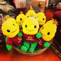 """Got your Niblet yet? 20% off in-store or online (March 15-17) with coupon code """"Gold2013"""" www.cobberbookstore.com #cordmn #cobbernation"""