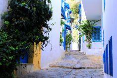My Path by Achref Tatouh (Gamat, Tunisia)