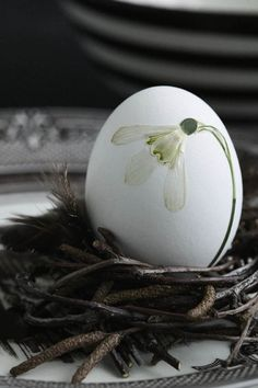 Pressed flowers on egg