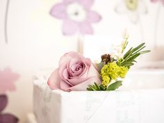 Beautiful Flowers..  For Detail : http://www.flowersvalentinesday.blogspot.com