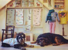 Venir a trabajar con ellos mucho #masamoranimal laboral Te esperamos con  colombiano en nuestra tienda  #dogsofinstagram #hotsalearg