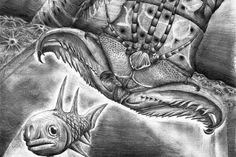 Scientists Discover Gigantic Extinct 'Monster Worm' With Snapping Jaws | The Huffington Post