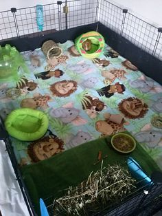 Jungle themed C and C cage. For the wild guinea in your pig haha