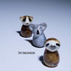 Slow loris, koala and sloth totems!
