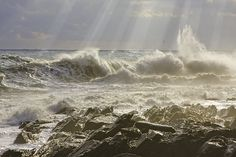 Sunbeams, ocean waves and seagulls on Maines rocky coastal shoreline fine art prints and canvas gallery wraps. Also on acrylic prints, pillows, iphone cases, shower curtains, greeting cards and more.