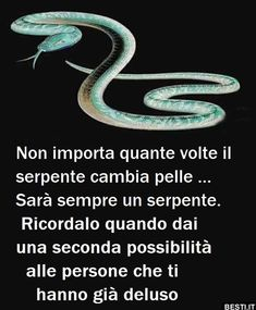 Non importa quante volte | BESTI.it - immagini divertenti, foto, barzellette, video Italian Phrases, Italian Quotes, Happy Quotes, Me Quotes, Italian Proverbs, Paz Mental, Proverbs Quotes, Lessons Learned In Life, Spiritual Quotes