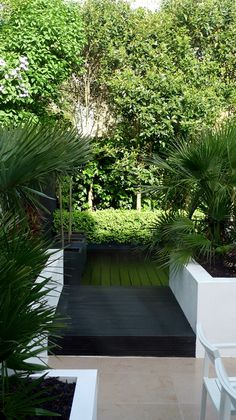 Modern Urban London Garden Design limestone paving white raised beds black decking architectural planting (6)