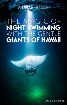 One of the most fascinating things to experience in Hawaii is to take a night swim with giant manta rays. Would you do it?