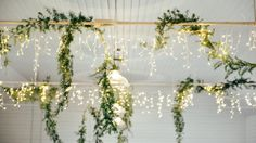 ceiling-lights-greenery-mcmahon