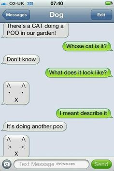 #Hilarious Text About A Cat