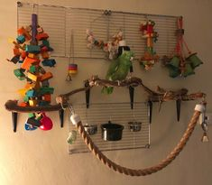 A great parrot playstand! Lots of enrichment<br> Parrot Perch Diy, Diy Parrot Toys, Diy Bird Toys, Parrot Pet, Parrot Bird, Diy Budgie Toys, Bird Perch, Parrot Stand, Bird Stand