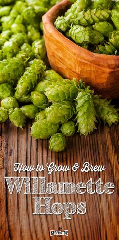 How to Grow & Brew Beer With Willamette Hops: Hop growing in the Willamette valley of Oregon has been going on since the 1850s, but it would take almost 120 years for the hop variety named for the mighty river and valley to be developed. Until the 1960's Oregon's main hop crops were Brewer's Gold and Fuggles.
