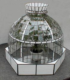 Want this lovely glass terrarium SO bad!