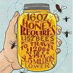 I love honey. Wow. With the way the bees are dying we might not have any soon :'(