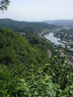Fresh Trier and Mosel Germany