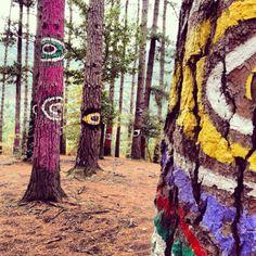 Bosque de Oma.