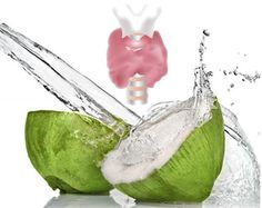 """""""Coconut oil has a direct effect in suppressing inflammation and repairing tissue, and it may also contribute by inhibiting harmful intestinal microorganisms that cause chronic inflammation."""""""