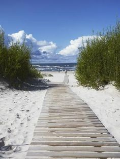 Boardwalk Leading to Beach, Liepaja, Latvia Photographic Print by Ian Trower Ocean Beach, Beach Day, Summer Beach, Photo Ocean, I Love The Beach, All Nature, Riga, Beach Scenes, Beach Cottages