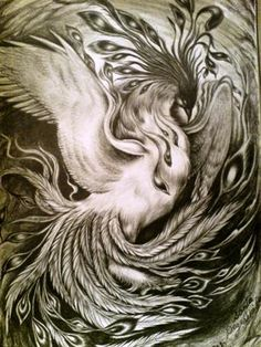 phoenix-drawing