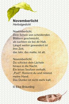 Novemberlicht | Geschichtensammlung