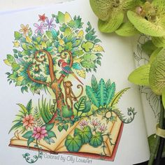 Your daily dose of tropical inspiration is brought to you today by Olly! Love this Jungle Book! Jungle Coloring Pages, Coloring Book Art, Colouring Pages, Coloring Tips, Adult Coloring, Johanna Basford Magical Jungle, Johanna Basford Secret Garden, Secret Garden Coloring Book, Johanna Basford Coloring Book