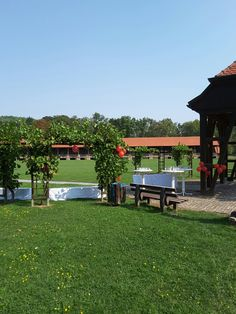 Sektempfang am Weintor Bad Sulza