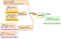 PHRASE simple ou complexe