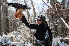 Prois Hunting & Field Apparel. For the serious women hunter.  Awesome shot of Katherine Grand & her hawk, Kit! #proiswasthere www.proishunting.com