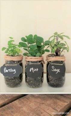 DIY Mason Jar Herb Garden Instructions - I like herb gardens on my kitchen window sill because it's convenient and easily accessible, and it looks nice!