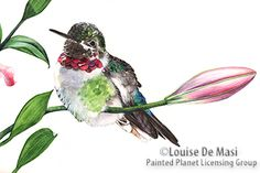 Australian-born wildlife artist Louise De Masi uses watercolor to translate her love of animals and nature into stunning works of art. Her naturalistic and detailed paintings unveil the personality...